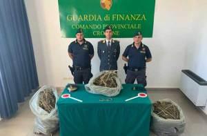 Sorpresi in un casolare con 13 kg di marijuana, due persone arrestate