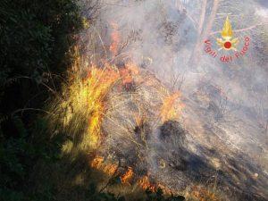 Lotta agli incendi boschivi, 36 interventi dei vigili del fuoco
