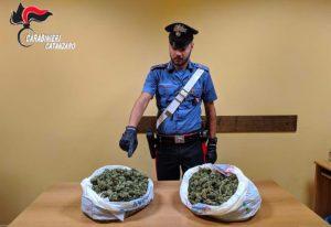 In auto con due chili di marijuana, arrestato 26enne di Montepaone