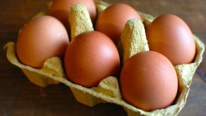 Allerta Ue, sospetto focolaio di Salmonella enterica legato al consumo di uova biologiche italiane