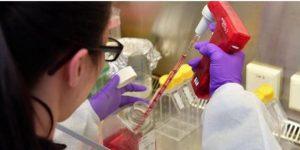 Docente dell'Università Mediterranea di Reggio Calabria positivo al coronavirus
