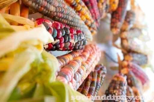 ornamental corn wreath