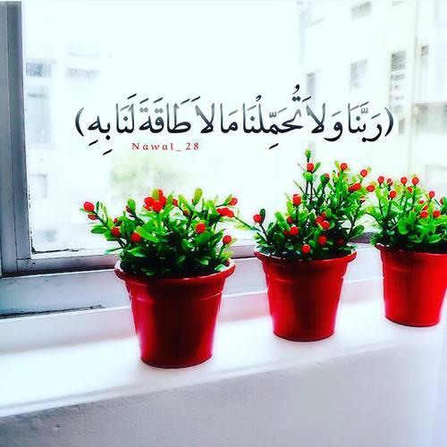 صور حلوه اسلامية مكتوب فيها ايات قرآنية