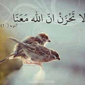 صور رائعة اسلامية مكتوب فيها آيات من القرآن