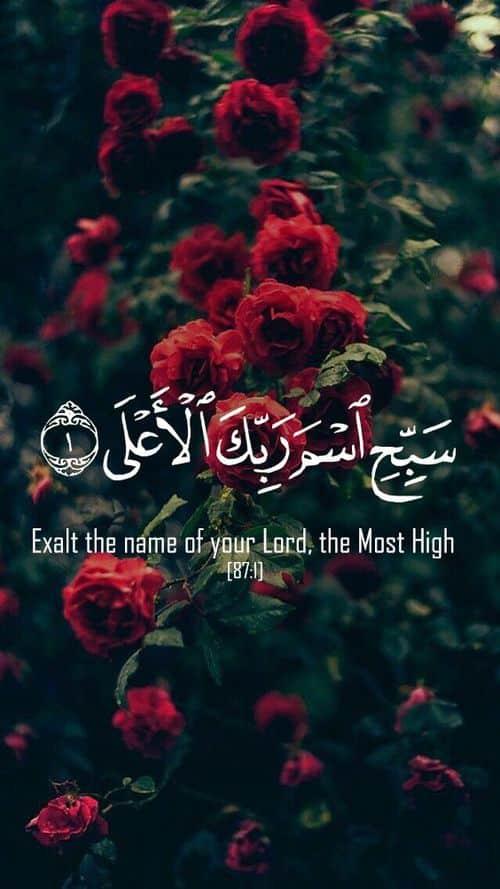 صور متنوعة اسلامية مكتوب فيها آيات من القرآن