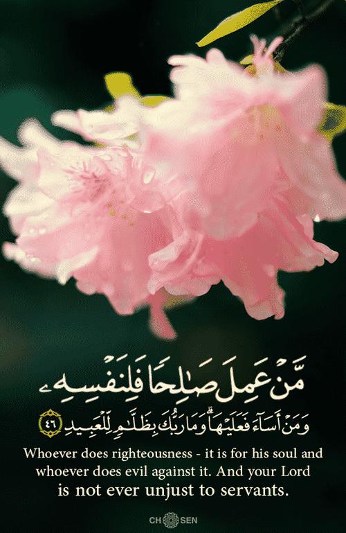 صور مكتوب عليها آيات من القرآن روعة