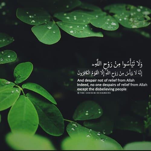 صور مكتوب فيها آيات من القرآن حلوه