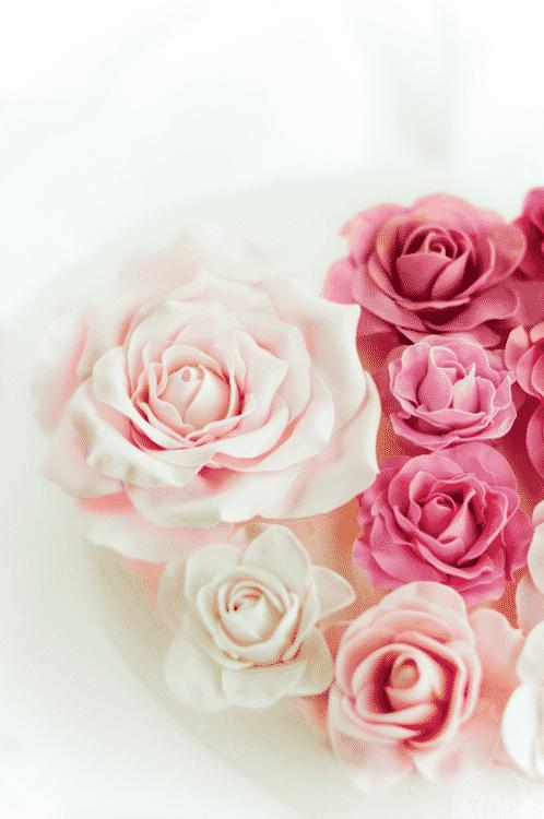 صور معبرة ورد جميل