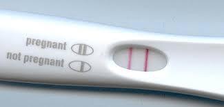 blog pregnancy test