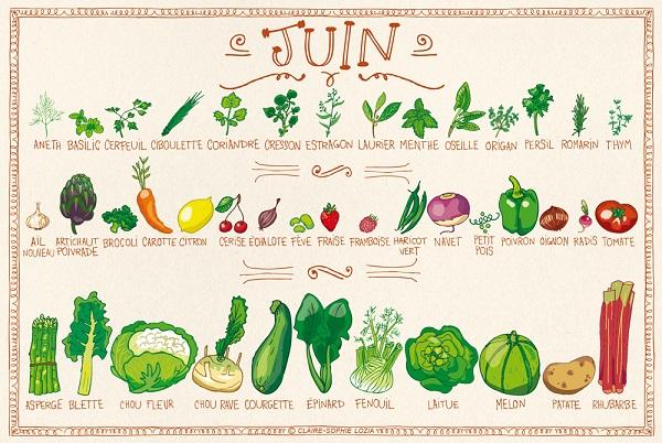 Fruits et légumes Juin - Crédit photo: site mrmondialisation