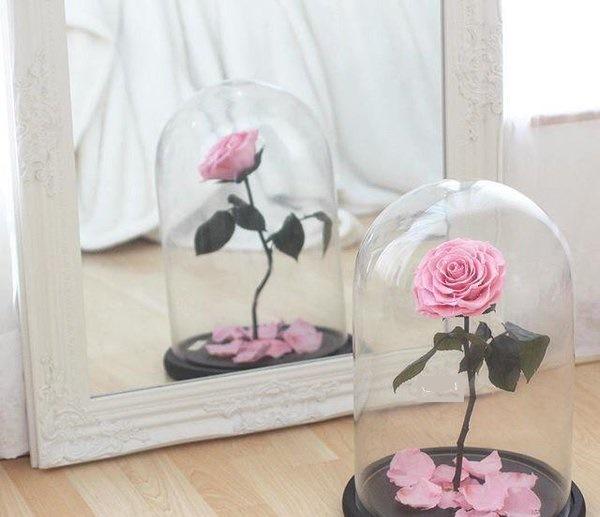 rose-eternelle