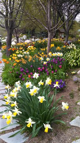 Yampa Botanic Garden2