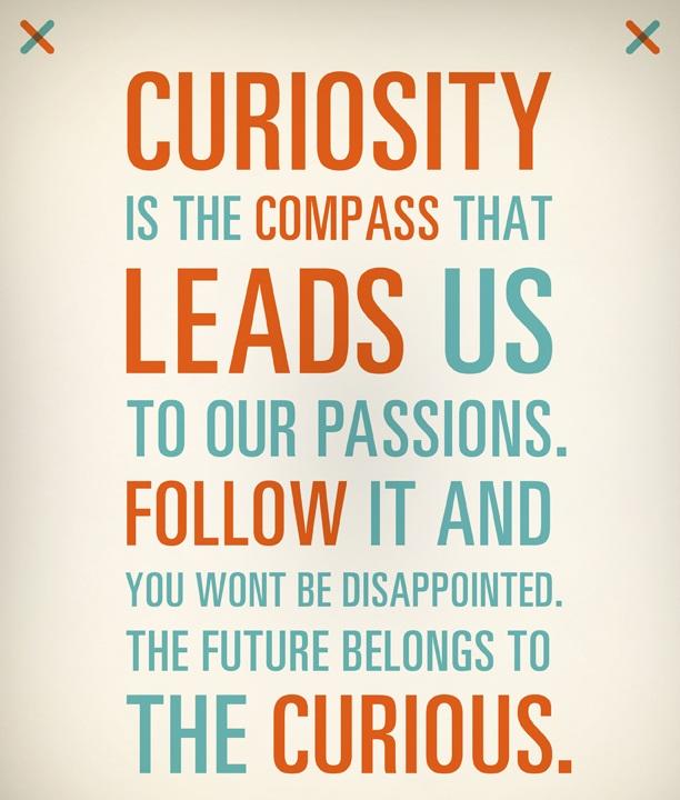 Curiosity-Quotes-85 (1)