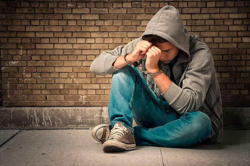 Delincuencia Juvenil y Seguridad Privada