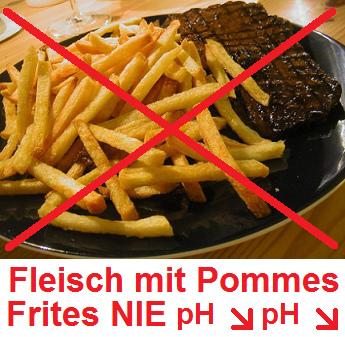 Fleisch mit Pommes Frites                               NIE