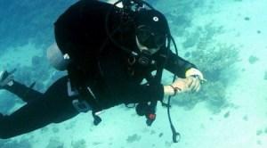 Държавата заделя 500 000лв. за подводна археология край Созопол 2