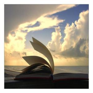Книга нищи тайните на остров Свети Иван 1