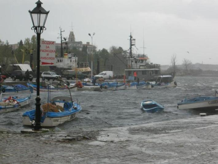 Силен вятър и паднали дървета в община Созопол 3