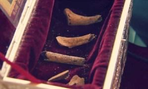Изследване на костиците на Свети Йоан Кръстител, открити край Созопол