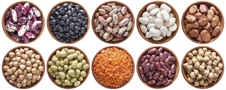 What are pulses and why are they important?