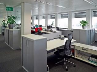 Pelican_Rouge_open-plan_office-1024x766