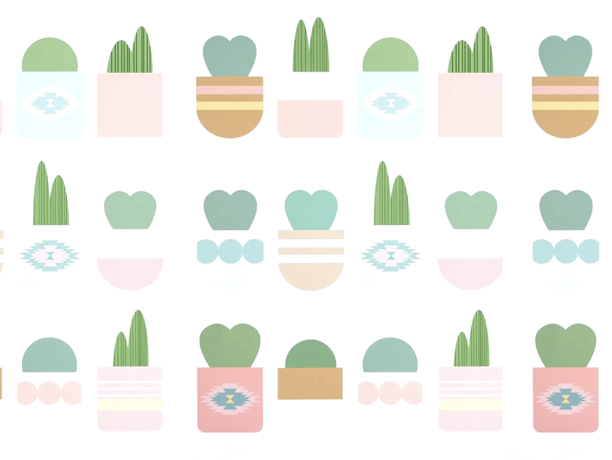 bungalow-blush-hellow-cactus-hero-slider-2