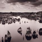Photography - 1st Place - Richard Auger