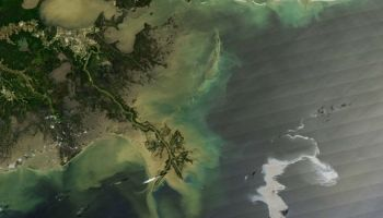 Deepwater Horizon Oil Spill as seen from space (Credit: NASA).