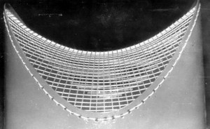 Fig. 2 Two-wave cable-stayed network by Sergey Makarov