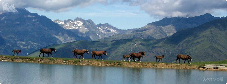 夏のスペインでハイキング Vol.1ピレネー山脈編