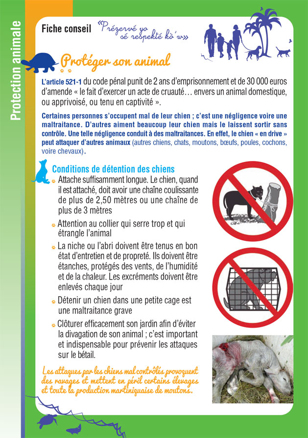 exemple-fiche-protection-01