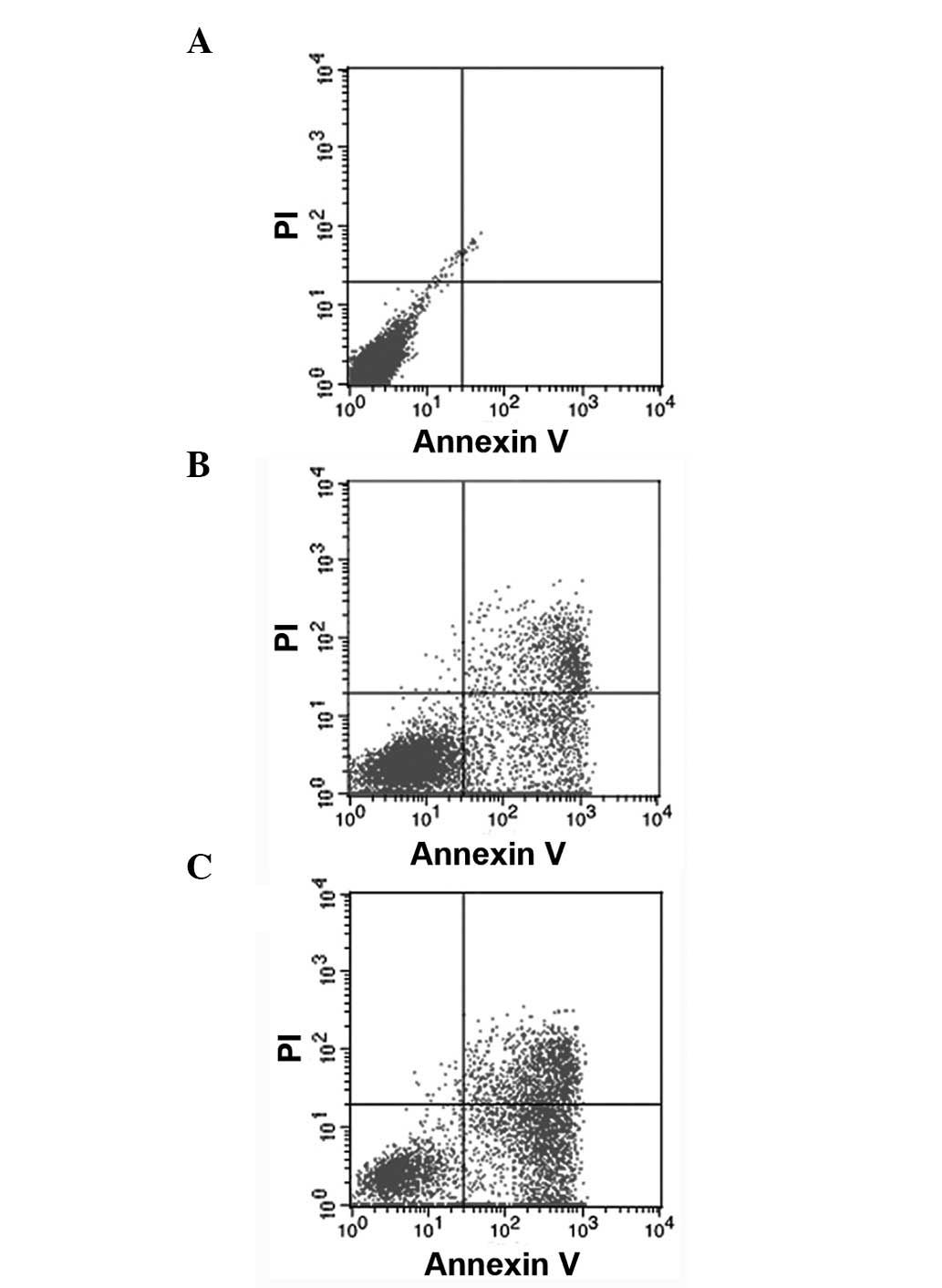 Tetra Arsenic Tetra Sulfide Induces Cell Cycle Arrest And