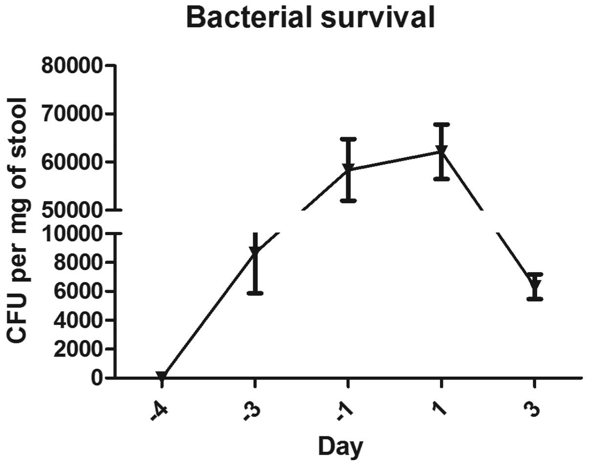 Effects Of Bacteria Mediated Reprogramming And Antibiotic Pretreatment On The Course Of Colitis