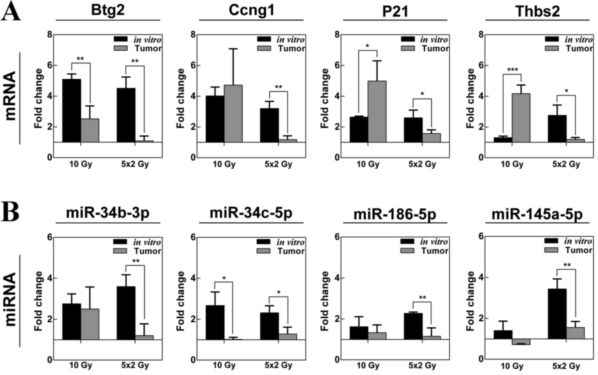 Gene And Mirna Expression Profiles Of Mouse Lewis Lung