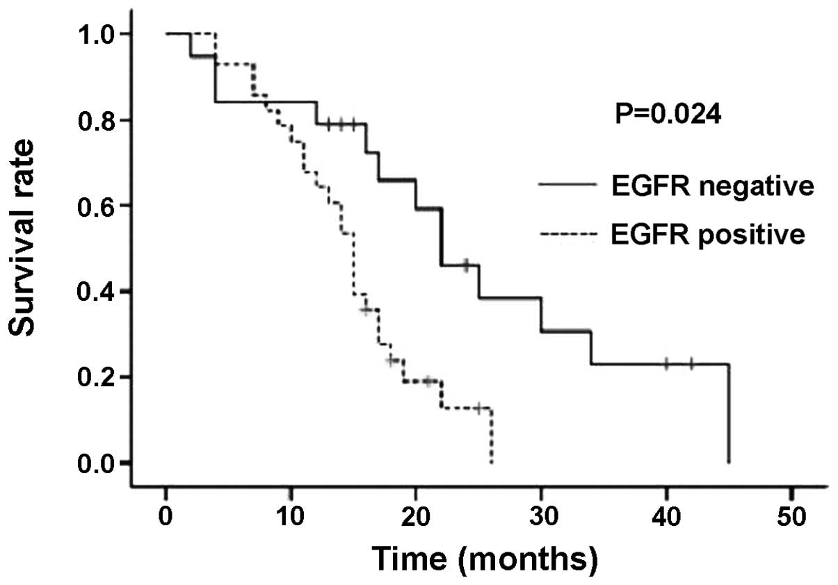 Prognostic Significance Of Epidermal Growth Factor