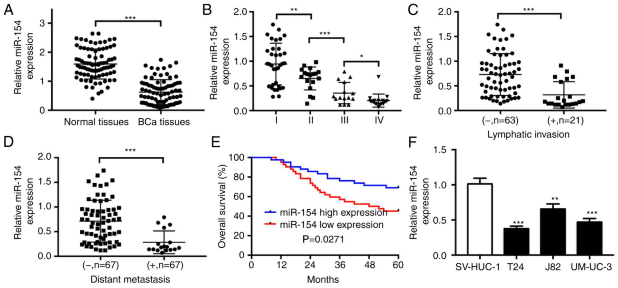 Microrna 154 Functions As A Tumor Suppressor In Bladder