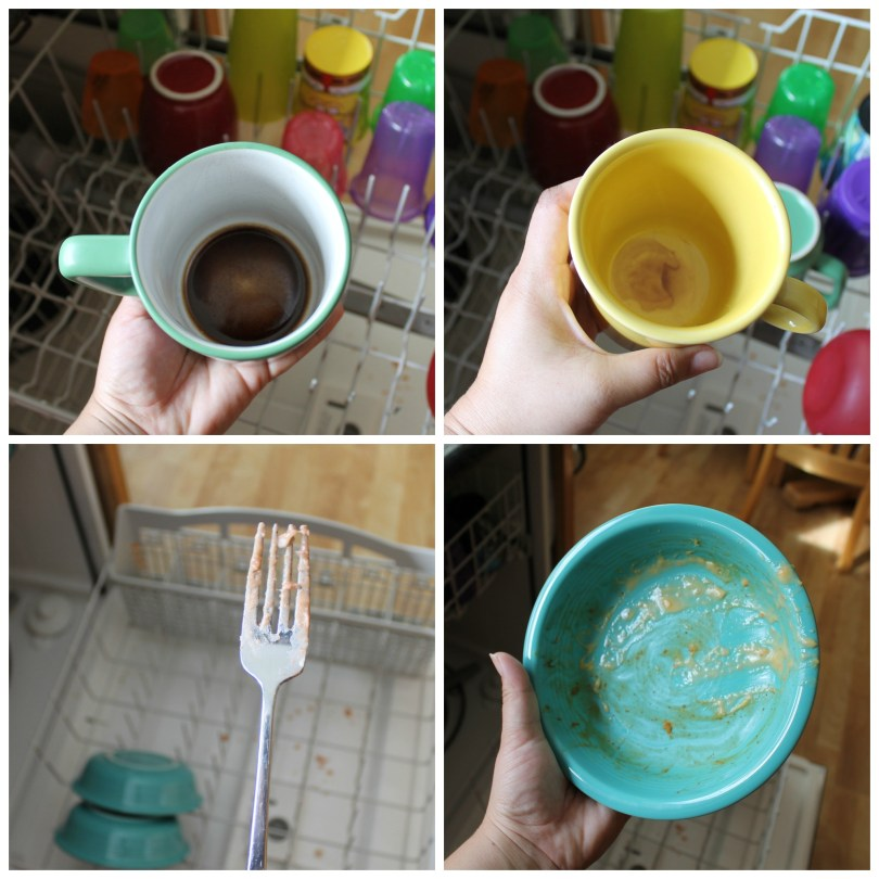 Dishwashing Myths 16