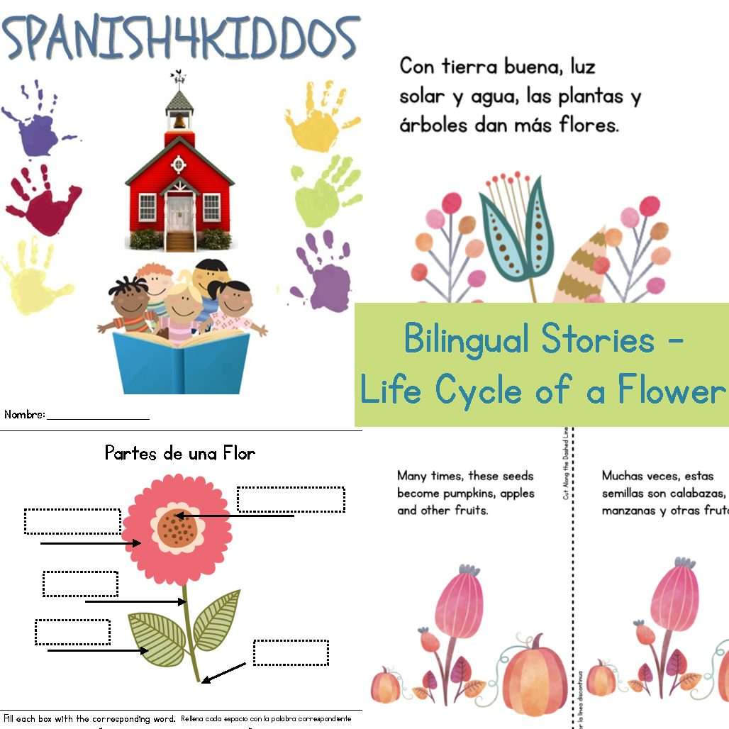 Spanish Classroom Objects Spanish4kiddos Educational