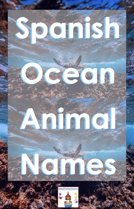 ocean animal names in Spanish