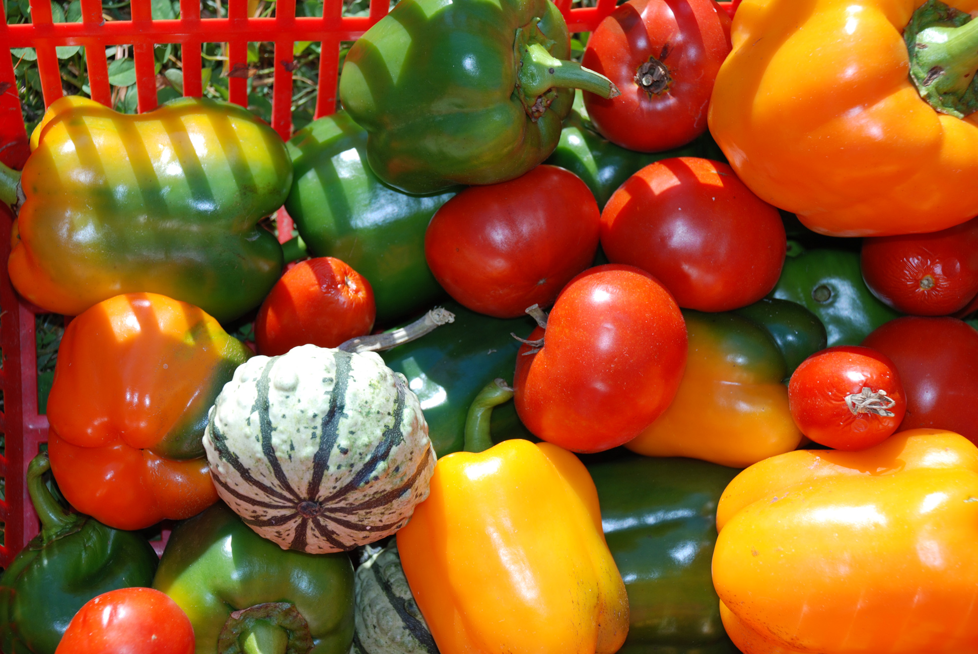 Food Vocabulary In Spanish La Comida