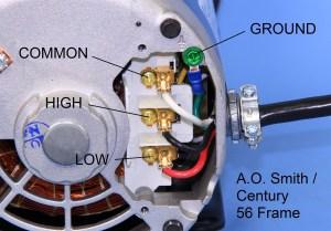 MTRAOS187563 TT505 Spa Pump Motor 56Fr 2 spd 12A 230v US Motors or Century 718756302