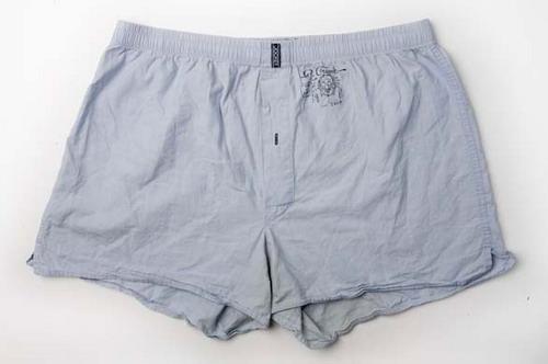 celebrity-underwear-rober-019