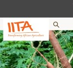 IITA Recruitment 2021/2022: 9 Massive Job Positions in International Institute of Tropical Agriculture