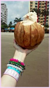 fresh coconut at the beach
