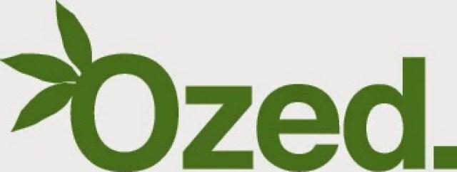 green-ozed OZED COMPANY occhiali da sole creati in legno 100% handmade