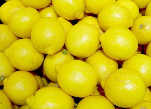 Lots of lemons!