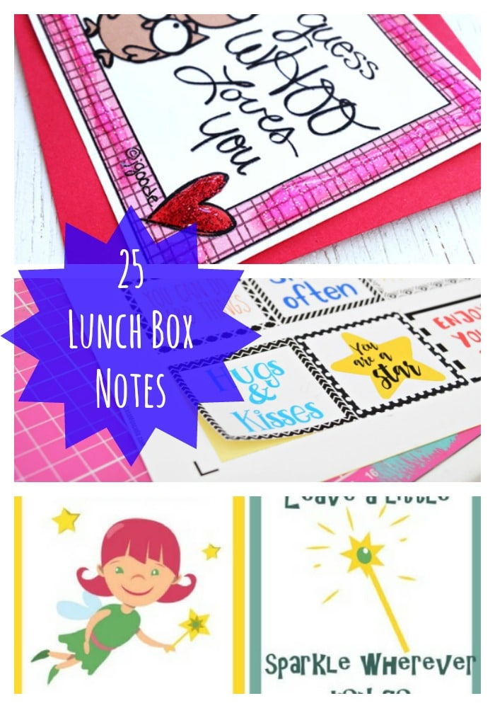 25 Lunch Box Notes