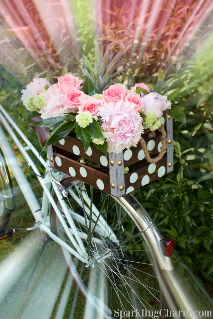 DIY Darling Dots Bike Box