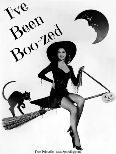 picture relating to You've Been Boozed Printable named Youve Been Booz-ed (Absolutely free Printable Sport Sheets) - Glowing