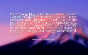 Soul Mates And Twin Flame Quote